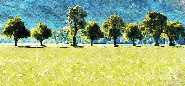 Oil Paint Photograph - Rhine Valley Rapeseed by DiFigiano Photography