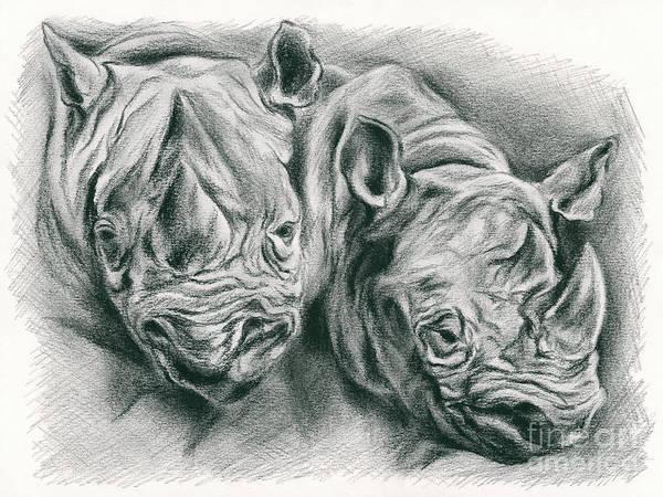 Drawing - Rhinoceros Study by MM Anderson