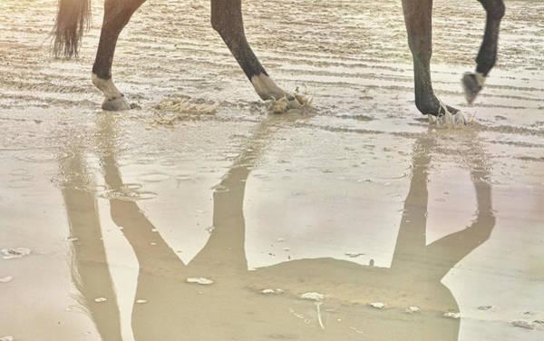 Photograph - Rhythm Reflection by JAMART Photography