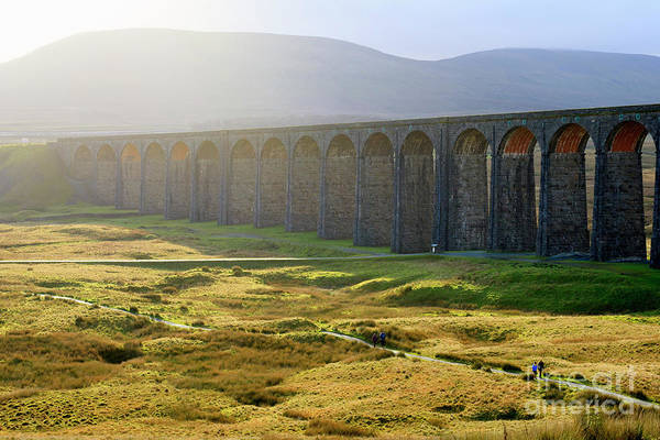 Taper Photograph - Ribblehead Viaduct In Autumn Sunlight North Yorkshire by Louise Heusinkveld