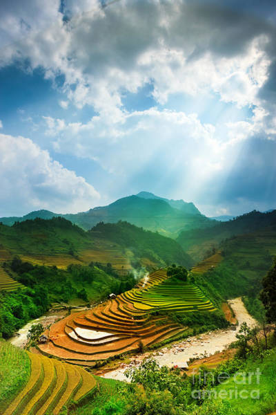 Myanmar Wall Art - Photograph - Rice Fields On Terraced Of Mu Cang by John Bill