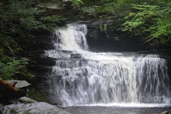 Wall Art - Photograph - Ricketts Glen Waterfall by Aicy Karbstein