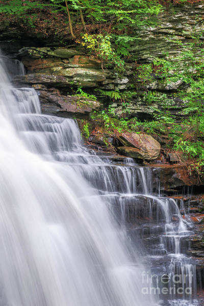 Photograph - Rickett's Glen Waterfall by Sharon Seaward
