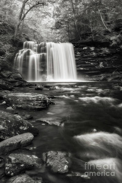 Photograph - Rickett's Glen Waterscape by Sharon Seaward