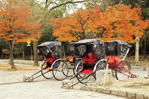 Nara Wall Art - Photograph - Rickshaws And Autumn Trees by Sunnywinds