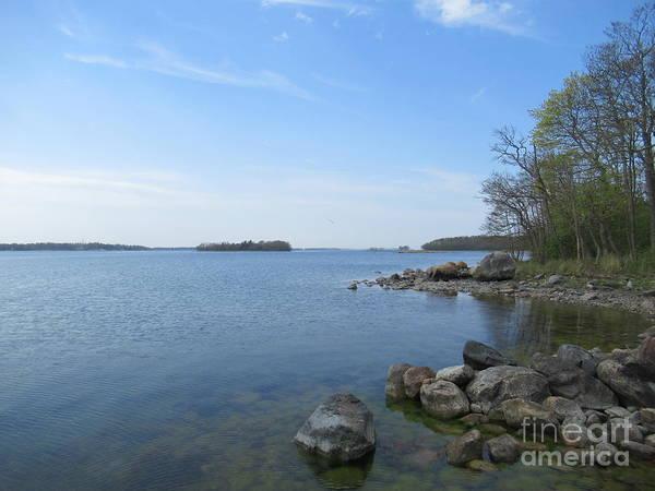 Photograph - Riddersholm Naturreservat  by Chani Demuijlder