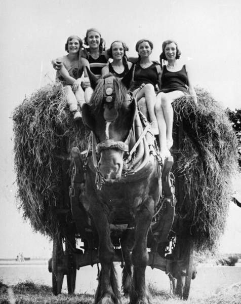 Girl And Horse Photograph - Ride On Hay Cart by Fox Photos