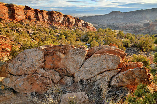 Photograph - Rim Rock Drive - East Side Colorado National Monument by Ray Mathis