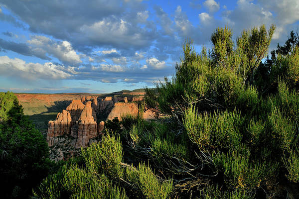 Photograph - Rim Trail At Sunset In Colorado National Monument by Ray Mathis