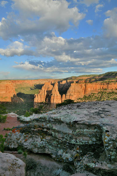 Photograph - Rim Trail At Sunset In Colorado Nm by Ray Mathis