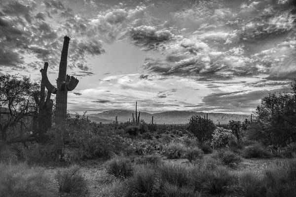 Photograph - Rincon Mountains And Clouds Black And White, Tucson, Az by Chance Kafka