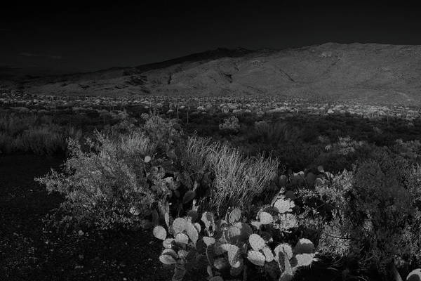 Photograph - Rincon Mountains In Black And White  by Chance Kafka