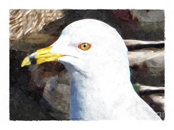 Digital Art - Ringbilled Gull Portrait by Art MacKay