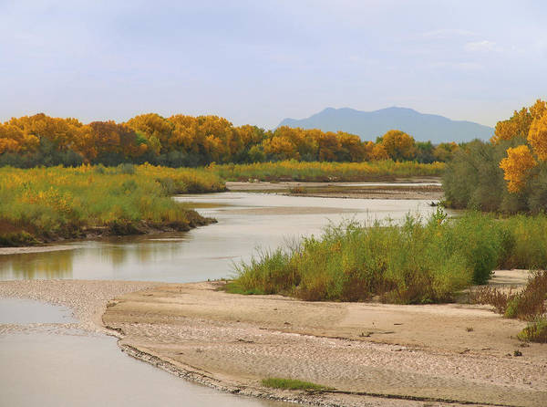 Rio Grande River Photograph - Rio Grande And Cottonwoods In Autumn by Duckycards