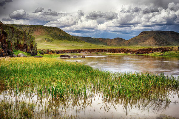 Wall Art - Photograph - Rio Grande by Eric Glaser