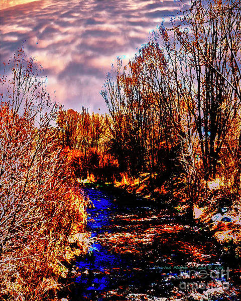 Digital Art - Rio Taos Bosque V by Charles Muhle