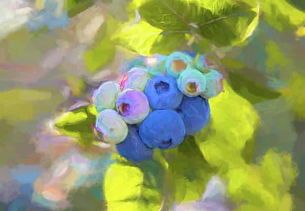 Digital Art - Ripening Blueberries Painted by Debbie Lund