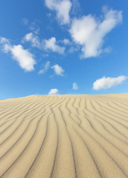 Sand Photograph - Rippled Sand Dune And Blue Sky With by Rob Kints