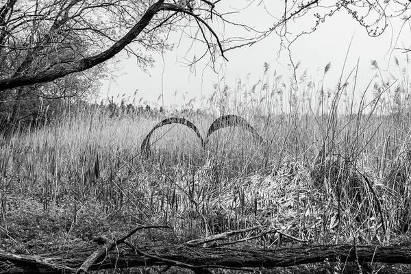 Wall Art - Photograph - Rising Heart by Sean Sweeney