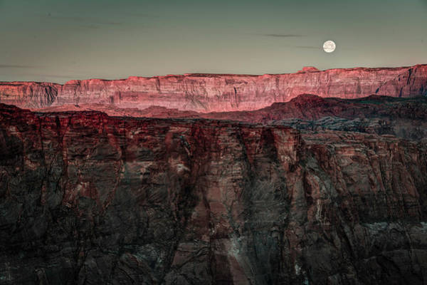 Photograph - Rising Moon by Laura Hedien