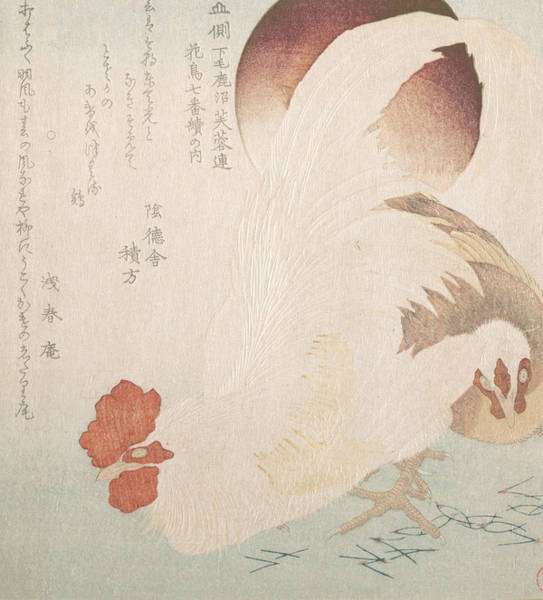 Relief - Rising Sun And Cock And Hen by Totoya Hokkei