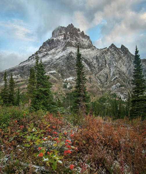 Photograph - Rising Wolf Mountain, Glacier National by Tim Fitzharris
