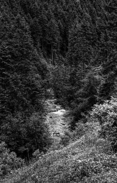 Wall Art - Photograph - Rissbach River In Karwendel Mountains by Panoramic Images