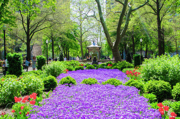 Wall Art - Photograph - Rittenhouse Square - Spring Afternoon - Philadelphia by Bill Cannon