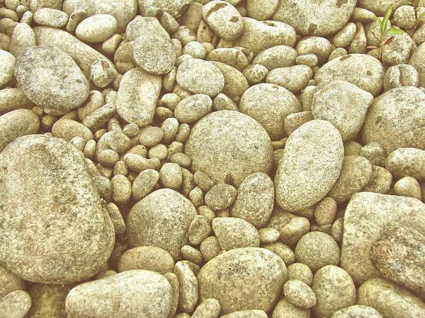 Photograph - River Carpet by JAMART Photography