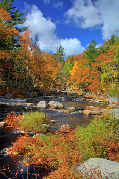 Wall Art - Photograph - River In Autumn 1 by Cworthy