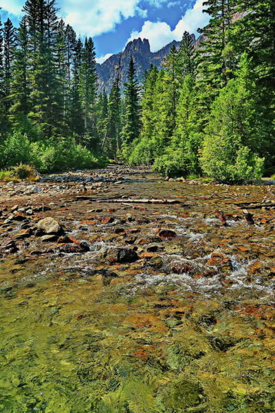 Photograph - River Mouth Flowing Into Red Fish Lake by Russ Harris
