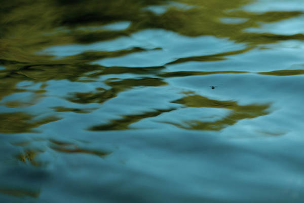 Photograph - River Ripples by JimO Ogilvie