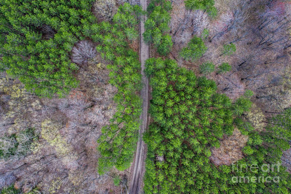 Wall Art - Photograph - River Road Aerial by Twenty Two North Photography