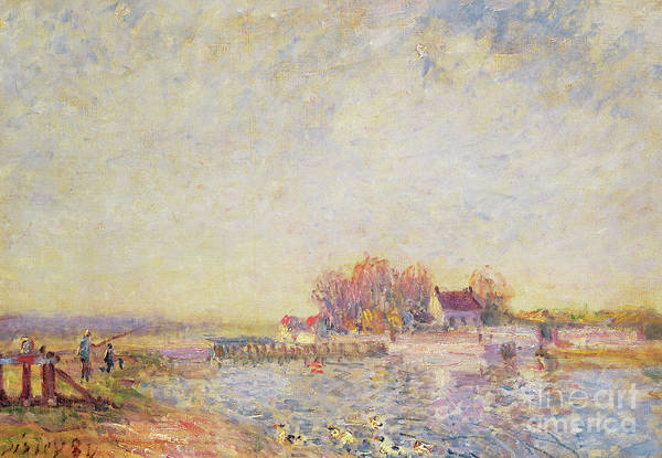 Wall Art - Painting - River Scene With Ducks, 1881 by Alfred Sisley