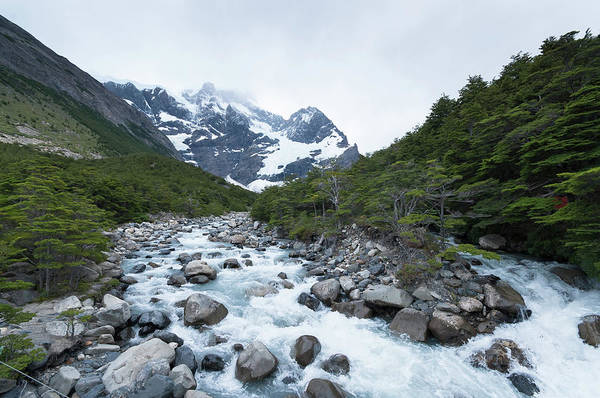 Antartica Wall Art - Photograph - River Torres Del Paine by Pedro Nunez Photography
