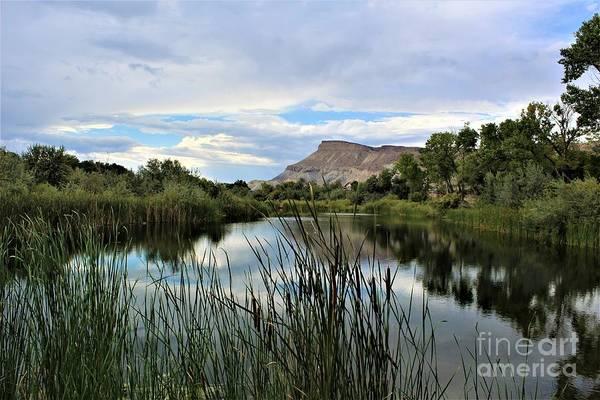 Photograph - Riverbend Park II by Tammie J Jordan