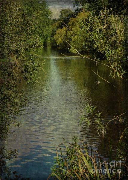 Digital Art - River's Edge by Liz Alderdice