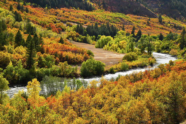 Photograph - Riverside Fall Colors Along Highway 133 by Ray Mathis