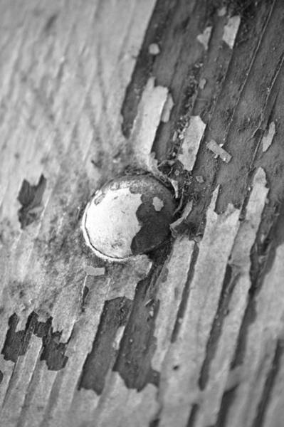 Wall Art - Photograph - Rivet by Angi Parks