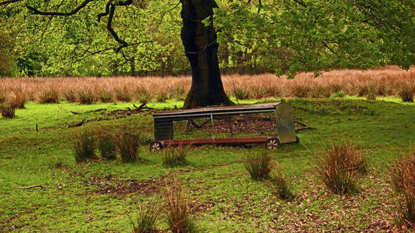 Photograph - Rivington. Terraced Gardens. Feeding Trough. by Lachlan Main