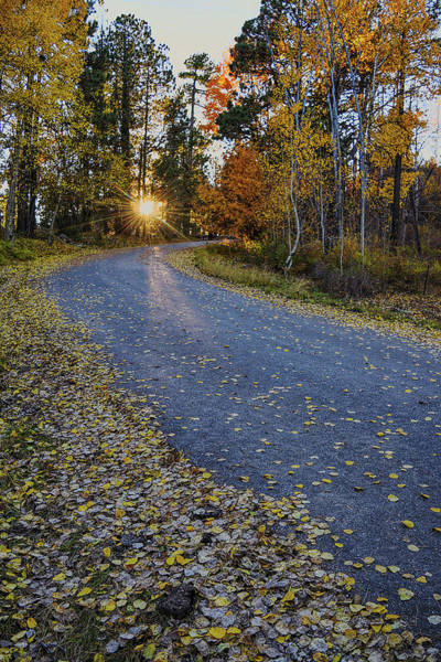 Photograph - Road To Fall by Chance Kafka
