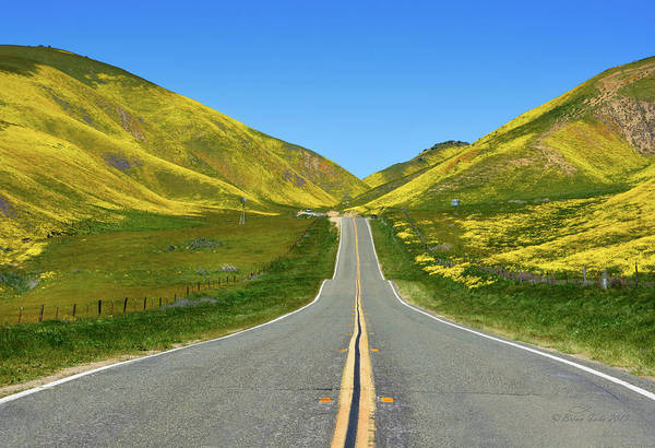 Photograph - Road To Gold by Brian Tada