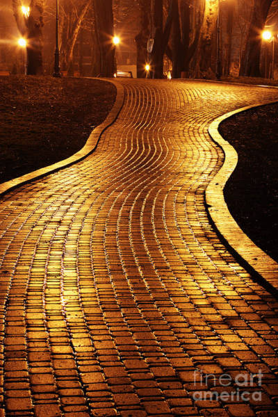 Late Wall Art - Photograph - Road To Mariinsky Park At Night In by Taras Verkhovynets