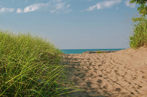 Photograph - Road To The Beach by Dan Urban