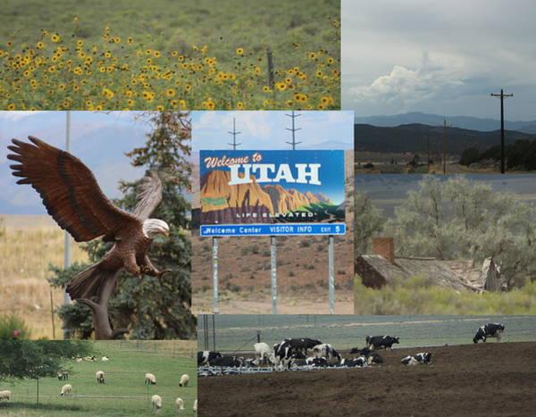 Photograph - Road Trip Through Utah On Highway 15 by Colleen Cornelius