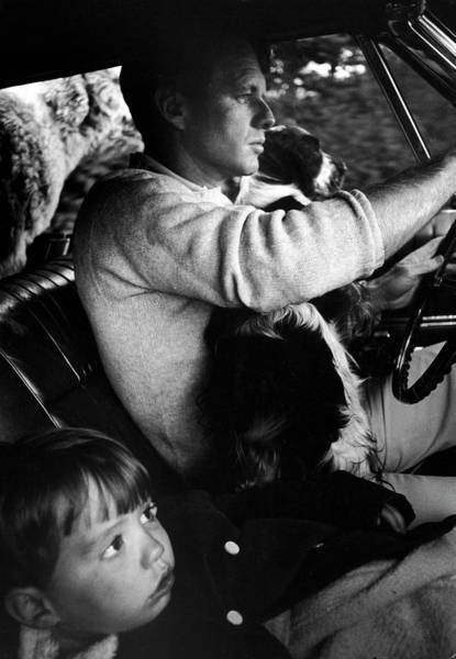 Springer Spaniel Photograph - Robert F. Kennedy & Familymatthew M. T by Bill Eppridge