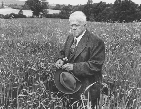 Adult Male Photograph - Robert Frost by Howard Sochurek