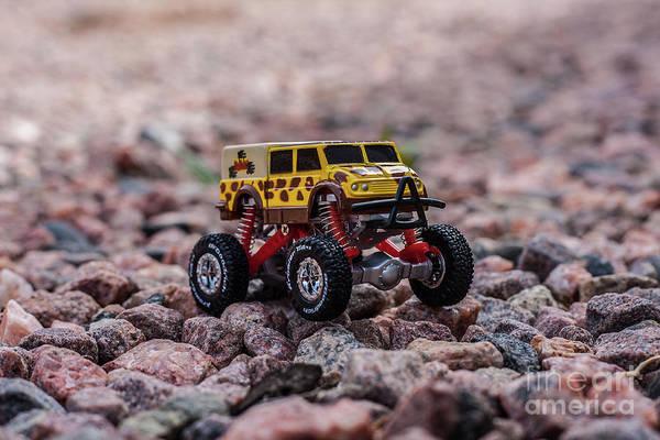 Photograph - Rock Crawler by Tony Baca