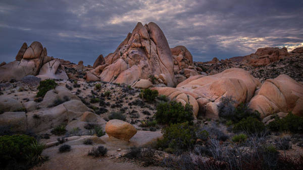 Photograph - Rock Formations In Joshua Tree by Rick Strobaugh