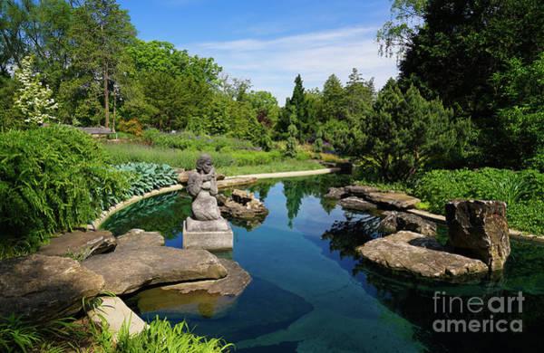Photograph - Rock Garden At The Water by Rachel Cohen
